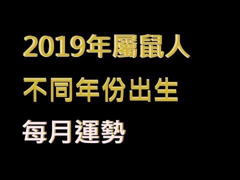 ☯️2019年屬鼠人不同年份出生的🐀全年運勢大全[2019年🐀每月運勢][純文字]