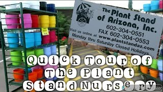 The Plant Stand Nursery Tour|February 2019