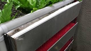 魚世界 FishWorld [個人分享] 錦鯉魚池全套過濾設備分享 Koi pond filter sharing
