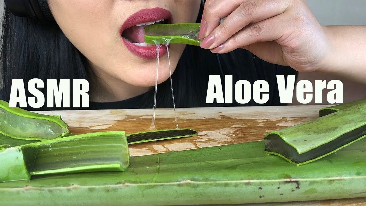 ASMR ALOE VERA CHALLENGE | Sticky and Crunchy Eating Sounds | No Talking | ASMR Phan