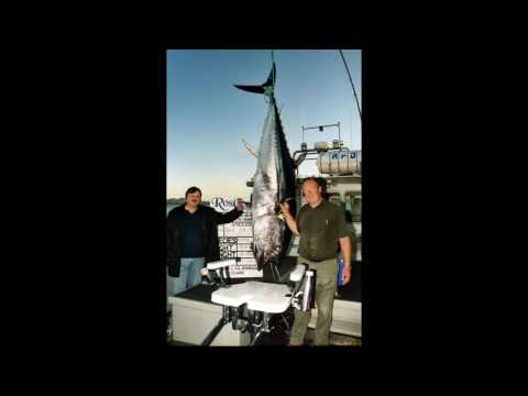 Ep  124 Michael Mcveigh, Irish Bluefin Tuna History