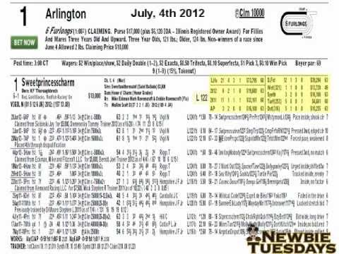 Pt. 1 How To Read Horse Racing Past Perfomances - Night School Newbie Tuesday