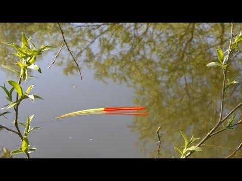 ДУМАЛ ОГРОМНЫЙ КАРАСЬ ПОЛОЖИЛ ПОПЛАВОК! Рыбалка весной 2020