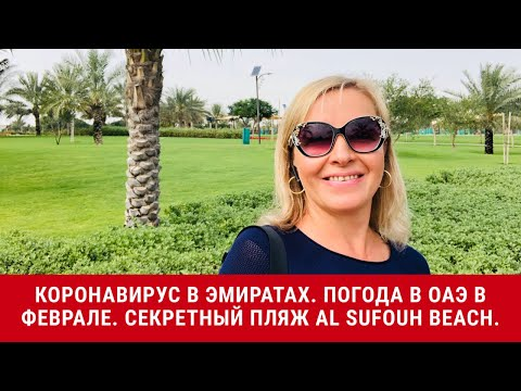 Коронавирус в ОАЭ Погода в ОАЭ в феврале Секретный пляж Al Sufouh Beach в Дубае