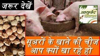 सोयाबीन खाने से पहले ये वीडियो देखना आपके लिए बहुत जरूरी है ayurved samadhan