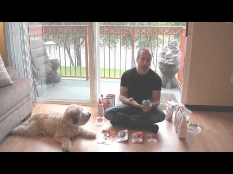 kong-pup-rubber-dog-toy-reviewed---best-toy-for-puppies-&-how-to-stuff-it
