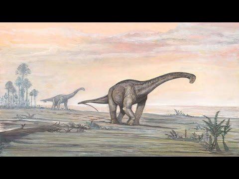 Sauropod dinosaur footprint: found in Australia