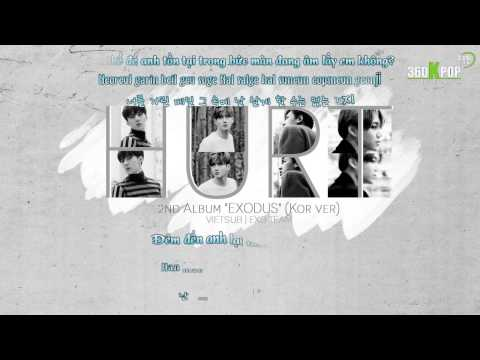 [Vietsub+Kara][Audio] EXO - Hurt (Kor ver) {2nd Album EXODUS} [EXO Team]