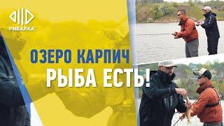 Что ловить под Киевом? Озеро Карпич Гвоздов