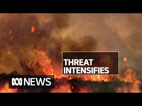 NSW waits nervously ahead of predicted catastrophic fire conditions on the weekend | ABC News