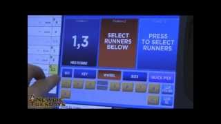 Trifecta Betting SSM June 5th