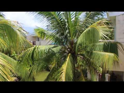 Room Tour  Palm Beach Resort & Spa Sanya 5*