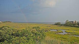 Preview of stream LBIF Marsh Cam