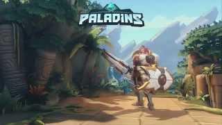 Paladins: The Developing Meta