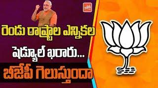 Maharashtra Assembly Election 2019 | Haryana Assembly Election 2019 | BJP | PM Modi | YOYO TV