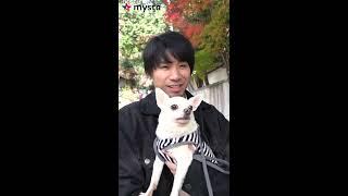 吉田山田 / mysta特別企画 「赤い首輪 」拡散プロジェクト 吉田と愛犬チャーリーのお散歩編