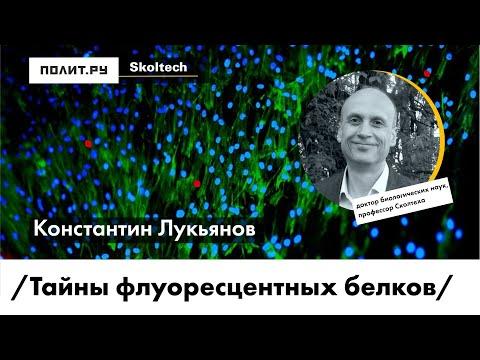Константин Лукьянов. Тайны флуоресцентных белков