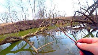 Микро речка ДО запрета голавль и щука на спиннинг Злые щучки не давали скучать Рыбалка в марте