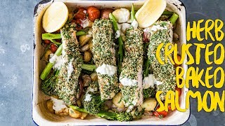 How To Make | Quick One Tray HempSeed Baked Salmon Recipe