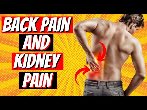 Back Pain VS Kidney Pain - How To Differentiate Them