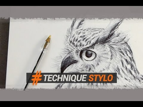 Dessiner Un Hibou Au Stylo Bille En Quelques Traits