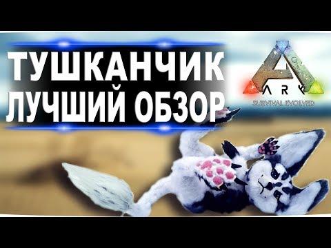 Тушканчик (Jerboa) в АРК. Лучший обзор: приручение, разведение и способности в ark.