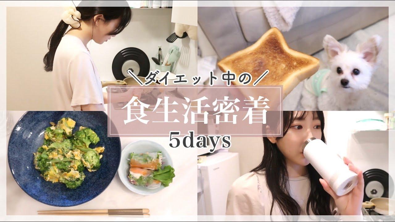 【食事vlog】5日間のダイエット中の食事に密着✨ / ダイエットレシピも公開!