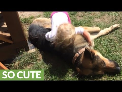 Little girl shares special friendship with German Shepherd
