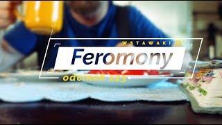 Wstawaki [123] Feromony