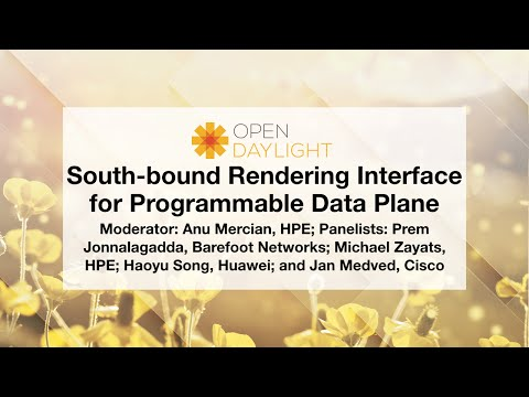 OpenDaylight Mini-Summit: South-bound Rendering Interface for Programmable Data Plane