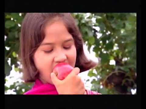 Pon Vilaiyum Bhoomi 15/05/2018