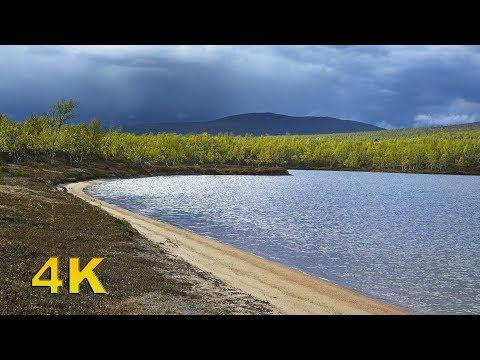 Muotkatunturit - Vaellus Peltojärven rantamilla