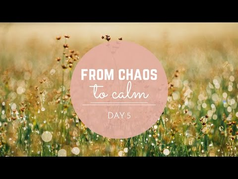 From Chaos to Calm: Day 5