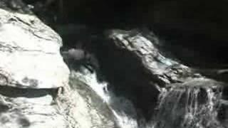 キヤニオニング 四国 吉野川