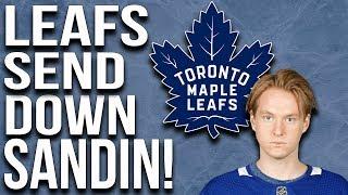 Maple Leafs Send Down Sandin