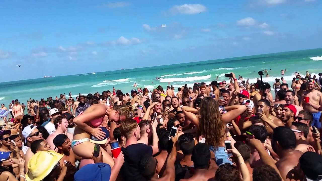 Image result for miami spring break