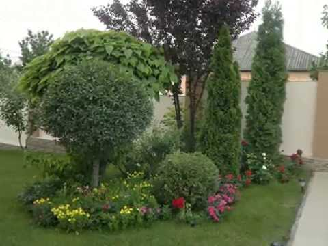 Примеры дизайна садового участка