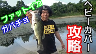 バス釣り ヘビーカバーの野池を攻略!!