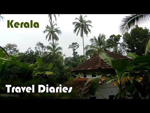 Travel diaries | Bangalore | Kerala | Kannavam forest | Muzhappilangad beach
