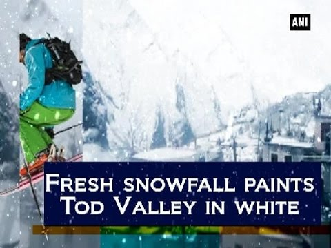 Fresh snowfall paints Tod Valley in white - Himachal Pradesh News