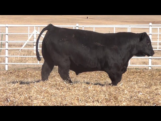 Express Ranches Lot 109