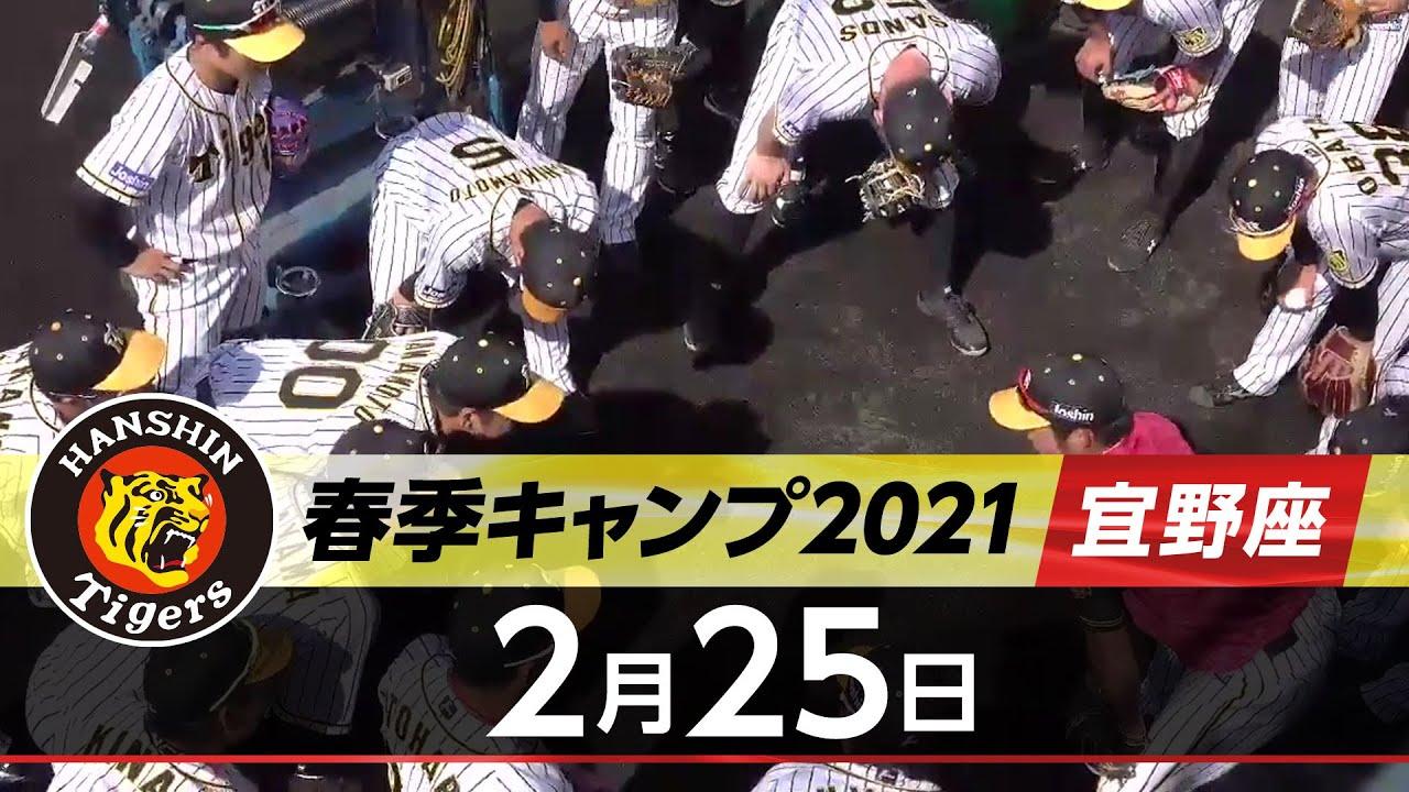 2021 キャンプ 阪神 タイガース