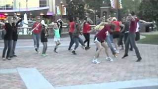 Flash Mob - Time Warp
