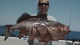 Grouper Fishing Mastery (GET ON THE EARLY BIRD VIP LIST)