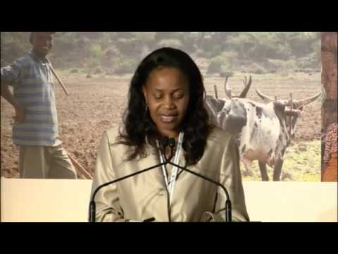 01. Opening Addresses from African Ministerial Delegates