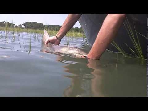 Fishing Isle of Palms SC