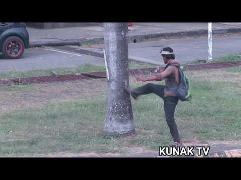 Download ORANG GILA DI KUNAK