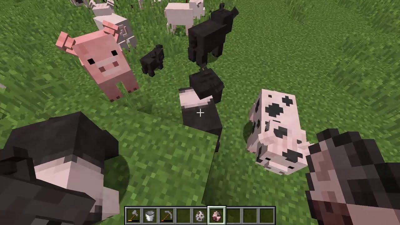 Animales Madafakas! Minecraft Mod Animania! Cap 13! Final!  Helldogmadness  09:12 HD