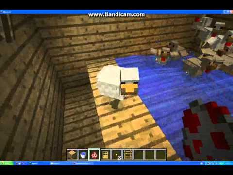 Chicken Farm Design 1 Travel Video