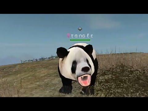 My New Panda ^^ | Wild Animals Online
